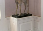 Decorator pedestal